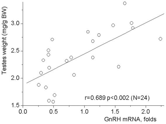 Correlation between testes weights and GnRH mRNA levels in the hypothalamus. Rats were weighted and sacrificed at the days 9, 11 and 14 of life. Testes were dissected and weighted. Probes of cDNA were synthesized from total mRNA extracted from the anterior hypothalamic preoptic area. Probes were examined for GnRH mRNA expression by the TaqMan assay-based real-time PCR. The comparative ddCT method was used to calculate mRNA expression relative to the beta-actin as an endogenous control. Each point represents an individual animal. Significant Pearson's linear correlation (r = 0.689 p