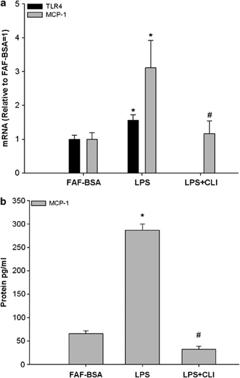 Effect of LPS and a TLR4-inhibitor on ( a ) TLR4 and MCP-1 mRNA expression and ( b ) MCP-1 protein secretion in 3T3-L1 adipocytes. 3T3-L1 adipocytes were incubated with DMEM growth media containing 2% FAF-BSA and LPS (2 ng ml −1 ) alone or in combination with the TLR4-inhibitor CLI095 (CLI, 3 μ M ) for 24 h. Results were expressed as ±s.e.m., relative to FAF-BSA=1 ( n =9), * P