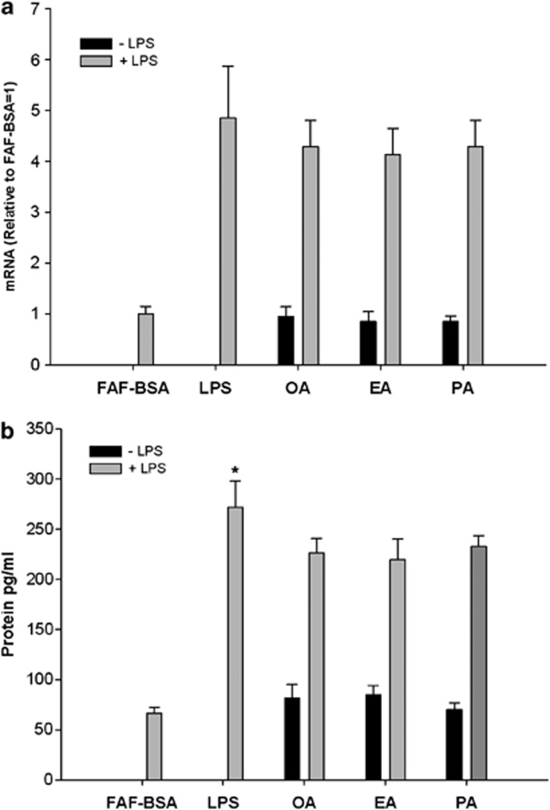 Effects of ( a ) FFA and LPS stimulation on MCP-1 mRNA expression and ( b ) MCP-1 protein secretion in 3T3-L1 adipocytes. 3T3-L1 adipocytes were incubated with DMEM growth media containing 2% FAF-BSA and 500 μ M of BSA-complexed fatty acid for 24 h. The fatty acids investigated are: monounsaturated fatty acid (oleic acid/OA), saturated fatty acid (palmitic acid/PA) and trans fatty acid (elaidic acid/EA). Results were expressed as±s.e.m., relative to FAF-BSA=1 ( n =9), ns=non-significant vs FAF-BSA.