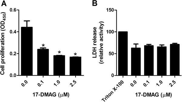 17-DMAG inhibits proliferation of T cells. A Proliferation response of human PBMCs stimulated by plate-bound anti-CD3 antibody (1 μg/ml) in absence and presence of 17-DMAG. Cell cultures were exposed to different concentrations of 17-DMAG and proliferation was assayed by ELISA after BrdU incorporation on the 6th day of treatment followed by 24 hours incubation. B LDH-based cytotoxicity ELISA measurement in culture medium after 24-hour incubation of PBMCs with different concentrations of 17-DMAG. LDH release from cells lysed with 1% Triton X-100 was regarded as 100%. The results are presented as mean values ± SEM of n = 4 healthy blood donors. * P