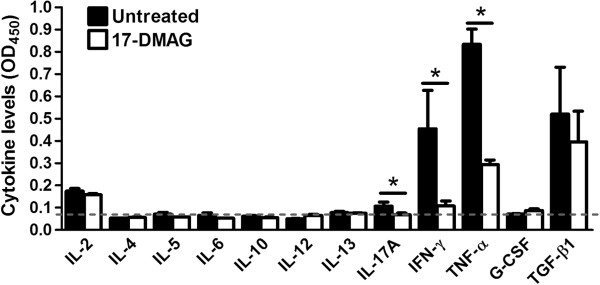17-DMAG arrests secretion of proinflammatory cytokines. ELISA-based evaluation of the cytokines IL-2, IL-4, IL-5, IL-6, IL-10, IL-12, IL-13, IL-17A, IFN-γ, TNF-α, G-CSF, and TGF-β1 secreted into the culture medium by PBMCs which were stimulated with 1 μg/ml plate-bound anti-CD3 antibody and treated without or with 17-DMAG (0.1 μM) for 72 hours. The results are presented as mean values ± SEM of n = 3 healthy blood donors. The dotted line represents the mean detection limit of the assay. * P