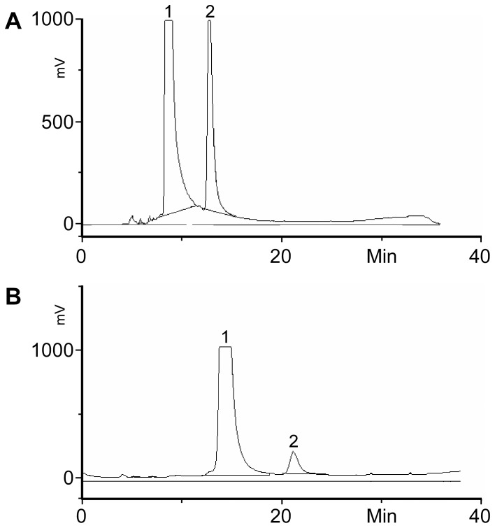 <t>HPLC</t> chromatograms of SAT I (A) and SAT IV (B) assays with calf spleen microsomes; calf spleen microsomes were extracted with Triton. The resulting extract was tested for SAT I (A) and SAT IV (B) activity by incubation with the respective <t>BODIPY-labelled</t> substrates for 1 h at 37°C. The presence of the respective activity was indicated by the presence of the product (peak 2) next to unconverted substrate (peak 1).
