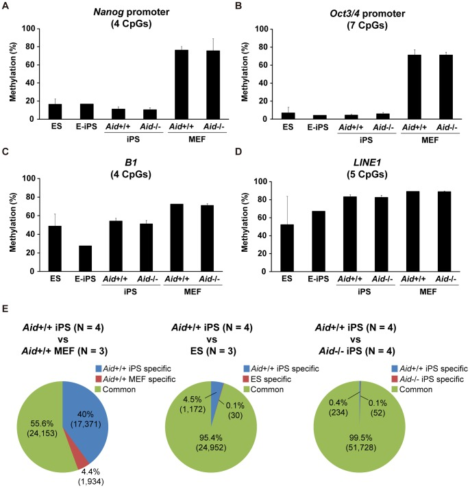 The DNA methylation status of Aid −/− iPS cells. (A–D) The DNA methylation status of the Nanog promoter (A), Oct3/4 promoter (B), B1 (C) and LINE1 (D) detected by pyrosequencing. The iPS cell clones analyzed were the same as those examined in Fig. 2C . The data are represented as the averages ± SD of the clones. (E) The results of the comprehensive DNA methylation analysis with MBD-sequencing. Pie charts show the comparison of the detected methylated regions between Aid +/+ iPS cells and Aid +/+ MEFs (left), Aid +/+ iPS cells and ES cells (middle), and Aid +/+ iPS cells and Aid −/− iPS cells (right). DMRs; Differentially methylated regions, CMRs; Commonly methylated regions.