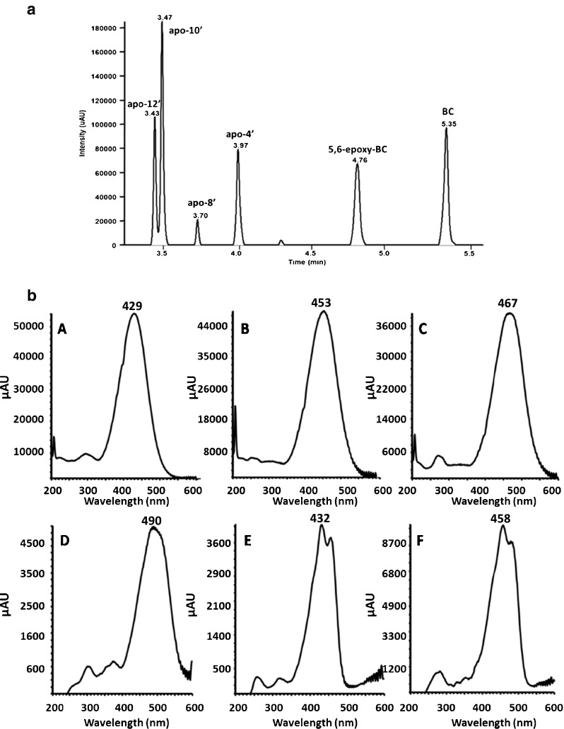 a UHPLC chromatogram acquired at 460 nm for a standard solution containing BC and CPs at 1.0 μg/mL. b Corresponding UV spectra of: A apo-12′-carotenal, B apo-10′-carotenal, C apo-8′-carotenal, D apo-4′-carotenal, E 5,6-epoxy-carotenal, and F β-carotene