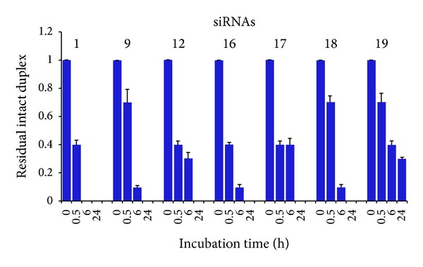 Stability of natural and modified siRNAs in 100% fetal bovine serum at <t>37°C.</t> After incubation, siRNAs were analyzed by PAGE and ethidium bromide staining. Gel images were captured by ChemiDoc XRS (Bio-Rad) and RNA bands were quantified by Image Lab software (Bio-Rad). Signal intensity values at t 0 were set at 1.