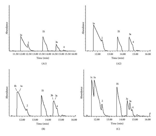 Total ion chromatograms of headspace gas from Penicillium roqueforti (in blue cheese) grown on margarine for 10 days and then incubated with or without added hexanoic acid in gas-tight vials for 22.8 h at room temperature. Figure (A1): no hexanoic acid added; Figure (A2): 100 μ L of 1 H-hexanoic acid added; Figure (B): 100 μ L of hexanoic-2, 2-D 2 acid added; Figure (C): 100 μ L of hexanoic-D 11 acid added. Peaks: 1a: 1 H 2-pentanone; 1b and 1c: deuterated 2-pentanone; 2: unidentifiable peak; 3a: 1 H 2-pentanol; 3b and 3c: deuterated 2-pentanol; 4: 3-hydroxy-2-butanone; IS (internal standard) = 4-methyl-2-pentanone (MIBK).