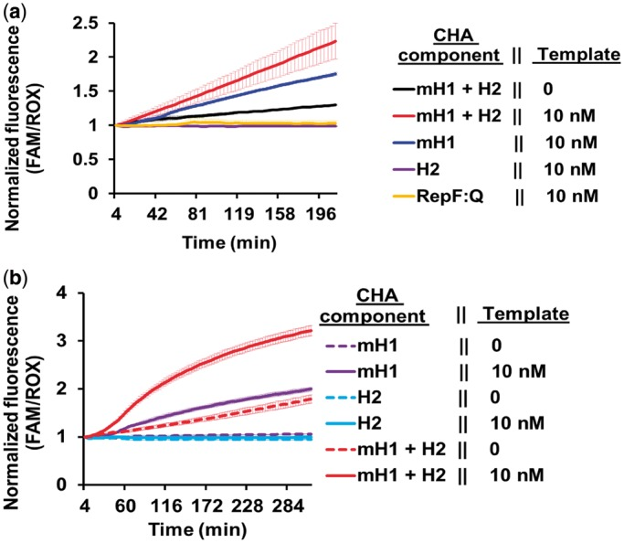 Cotranscriptionally generated RNA CHA as signal transducer for nucleic acid diagnostics. ( a ) End-point sequence-specific detection of SDA-generated ssDNA targets by RNA CHA. Samples with or without 10 nM template 1234LTRSDA were amplified by SDA for 90 min at 37°C in 25 µl of reaction volumes. Reactions were then incubated at 95°C for 5 min and stored at room temperature before assay by RNA CHA. Five microliters of these SDA products was then probed with 2 µl of Sephadex G25 column-purified cotranscribed mH1:H2 RNA CHA circuit. RNA CHA cotranscriptions were performed with T7 RNA polymerase using 50 ng each of the mH1 and H2 transcription templates for 1 h at 42°C. End-point RNA CHA detection reactions were assembled in 1× TNaK buffer containing 20 U of RNaseOUT, 0.5 µM ROX reference dye and 100 nM RepF (annealed with 5× excess RepQ) fluorescent DNA reporter duplex for quantitating RNA CHA in real-time at 52°C. Negative control reactions lacking RNA CHA components or containing 2 µl of either only mH1 or H2 were also tested. ( b ) Real-time signal transduction of ssDNA-generating SDA by cotranscribed mH1:H2 RNA CHA. High temperature (55°C) SDA reactions were set up with or without 10 nM 1234HTRSDA template in 20 µl of volume containing 0.5 µM ROX reference dye and 75 nM RepF (annealed with 5× excess RepQ) fluorescent DNA reporter duplex for quantitating RNA CHA in real-time. Real-time sequence-specific signal transduction was achieved by adding 2 µl of unpurified mH1:H2 RNA CHA circuits cotranscribed from 50 ng of each transcription template to the SDA reactions. Control SDA reactions containing no RNA CHA components or 2 µl of either only mH1 or H2 were also tested.