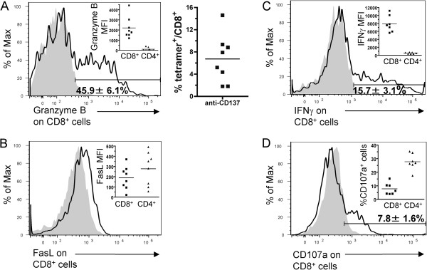 The cytotoxic mechanisms responsible for EG7 tumor rejection are present in TILs after treatment with anti-CD137 mAb. Mice were challenged s.c. with 5 × 10 5 EG7 cells and treated i.p. with anti-CD137 mAb on days 9 and 11. Two days later, tumors were removed and TILs were analyzed by flow cytometry for intracellular granzyme B ( A left) and percentage of H-2K b -SIINFEKL tetramer + cells ( A right), surface FasL ( B ), intracellular IFNγ ( C ) and surface CD107a ( D ) expression on gated CD8 + and CD4 + T lymphocytes. Histograms show CD8 + gated T cells that come from a representative experiment. Grey histograms represent isotype-matched control antibody stainings and open histograms protein-specific surface or intracellular stainings from representative cases. The insets in each histogram show the mean fluorescense intensity (MFI) after subtracting the background staining or the percentage of CD107a positive cells ( D ) for the indicated immunostainings on CD8 + and CD4 + T cells from individual tumors. The experiment was performed with 7-8 mice per group and mean±SEM is included in each histogram.