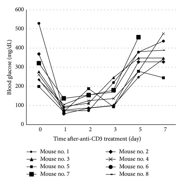 Effect of anti-CD3 treatment on blood glucose of NOD mice with new onset disease. NOD mice with blood glucose over 200 mg/dL for two consecutive days were treated with intraperitoneal injection of anti-CD3 (50 μ g/mouse). Thereafter, blood glucose was monitored daily for 7 days. Eight diabetic NOD mice were included in this experiment.