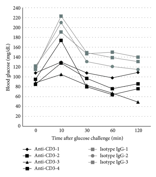 Intraperitoneal glucose tolerance test (IPGTT) in mice treated with anti-CD3 antibody or isotype IgG. C57BL/6 mice under the treatment of anti-CD3 antibody or isotype IgG as described elsewhere for 48 h received intraperitoneal injection of glucose (1 g/kg body weight). Thereafter, the blood glucose was monitored at 10, 30, 60, and 120 min. The glucose level before glucose injection served as the baseline level for each mouse. The results of all animals at different time points were depicted individually.