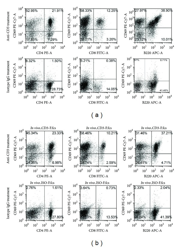 Effect of anti-CD3 antibody treatment on T and B cell activation in vitro and in vivo . (a) In vitro experiment . Spleen cells 1 × 10 6 /well in 24-well plate were stimulated with anti-CD3 antibodies (3 μ g/mL) or Isotype IgG (3 μ g/mL) for 24 hours. Thereafter, The cells were harvested and stained with CD4, CD8, B220, and CD69 and analyzed by flow cytometry. (b) In vivo experiment . C57BL/6 mice were treated with intraperitoneal injection of anti-CD3 antibodies (50 μ g/mouse) or Isotype IgG (50 μ g/mouse). Three mice were included in each group. Twenty-four hours later, all mice were killed, and spleen cells of each individual mouse were prepared and stained for CD4, CD8, B220, and CD69. The expression of these markers was examined by flow cytometry.