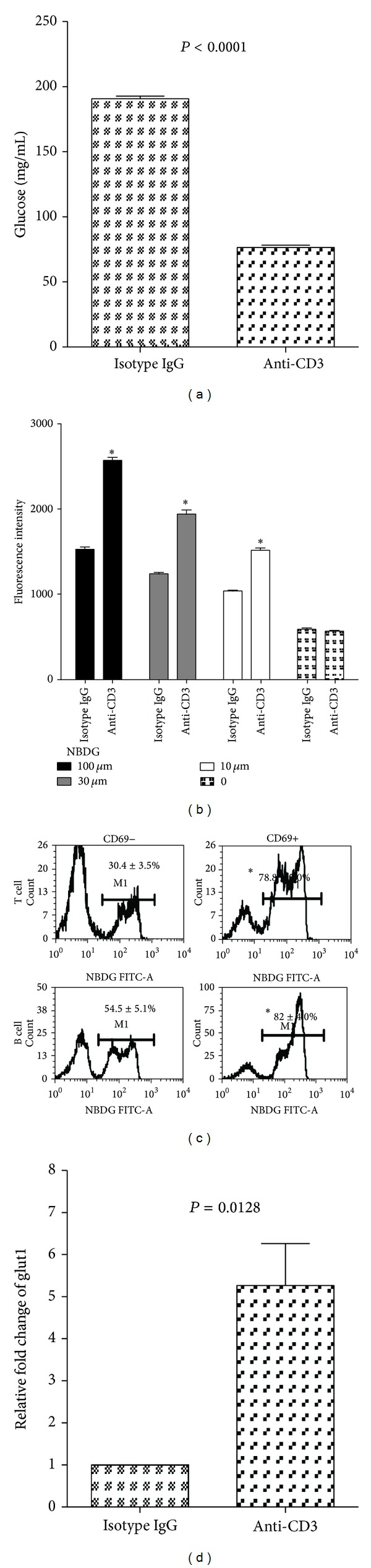 Anti-CD3 treatment enhances glucose intracellular transportation by the activated lymphocytes. (a) Freshly prepared spleen cells (1 × 10 7 /well) were cultured in a 24-well plate in 1 mL medium containing 10% fetal bovine serum with glucose concentration of 360 mg/dL. Anti-CD3 antibody (3 μ g/mL) or isotype IgG (3 μ g/mL) was added to the cultures. The culture wells were quadruplicated and incubated for 24 h. Glucose concentrations were measured before and 24 h after incubation. The results were reproduced in additional two independent experiments. (b) Freshly prepared spleen cells were stimulated with anti-CD3 antibody (3 μ g/mL) or isotype IgG (3 μ g/mL) for 3 hours; thereafter, different concentrations of 2-NBDG as indicated were added to the cultures for additional 2 hours. The fluorescent intensity of the cells was examined by BioTec plate reader using a laser filter with 480 nm excitation and 528 nm emission. The values of between anti-CD3 and isotype IgG were compared for each concentration of 2-NBDG (* P