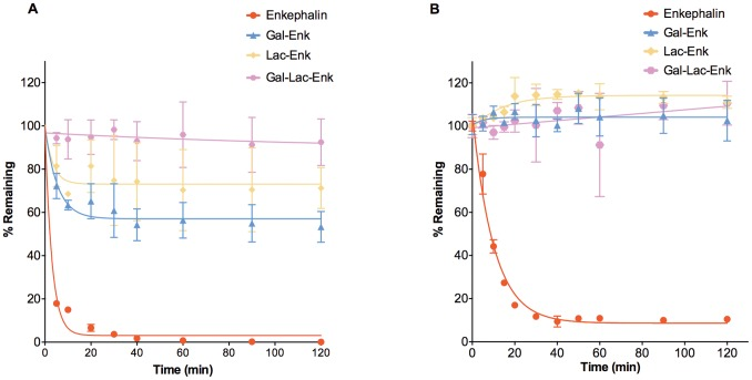 Stability profiles of enkephalin and carbohydrate-derived enkephalins. A) Plasma stability assay: the concentration of compounds in plasma was determined at various time points using RP-HPLC on a C18 Vydac column, gradient of 20–35% (enkephalin) or 0–70% solvent B (glycosylated enkephalins) over 30 min. B) Caco-2 cell stability assay: The concentration of compound in Caco-2 cell homogenates at various time points was quantified using LC-MS. Data presented is the mean ± S.D. (n = 3).