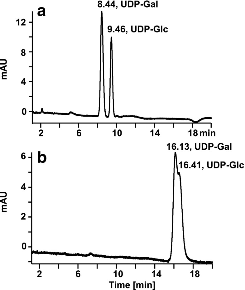 Influence of the potential applied to the ESI source on retention of UDP-sugars. Chromatogram obtained with a newly installed or regenerated PGC column ( a ); chromatogram obtained after 20-min utilization of the column connected to the ESI source of an Orbitrap mass spectrometer ( b ). Conditions: column regeneration was performed with 80 % acetonitrile in water containing 0.10 % trifluoroacetic acid for 20 min, the sample measurements were done with the gradient program described in the materials and methods section for HPLC-MS; detection, UV, 262 nm; sample. UDP-Gal (100 μmol L −1 ) and UDP-Glc (100 μmol L −1 )