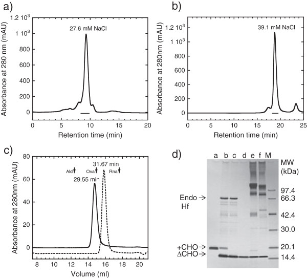"""Purification of N-glycan untrimmed and trimmed tag-free hFasLECDs. a) Elution profile of N-glycan untrimmed tag-free hFasLECD sample (pre-purified by 1st Hi-Trap S cation-exchange chromatography) in 2nd cation-exchange chromatography. Used column: Resource S 6 ml. The region shown in underbar was collected and used for characterization in c) . NaCl concentration under principal peak eluting condition is described. b) Elution profile of N-glycan trimmed tag-free hFasLECD sample in 3rd cation-exchange chromatography. Used column: Mono S 1 ml. The region shown in underbar was collected and used for characterization in c) . NaCl concentration under principal peak eluting condition is described. c) Elution profiles of fractionated products in size-exclusion chromatography. Solid line: N-glycan untrimmed tag-free hFasLECD. Dashed line: N-glycan trimmed tag-free hFasLECD. Used column: Superdex 200 10/300 GL. Elution buffer: 50 mM sodium acetate plus 150 mM NaCl (pH 5.6). Flow rate: 0.5 ml/min. The peak retention time of each sample is described. Vertical arrows indicate the elution positions of molecular-weight size-markers [Ald, aldolase (158 kDa); Ova, ovalbumin (44 kDa); Rna, ribonuclease A (13.7 kDa) under the same conditions. d) SDS-PAGE analysis of purification course during N-glycan trimming with Endo Hf glycosidase and receptor-mediated co-immunoprecipitation using wild type and mutant hFasRECD-T-Fcs. Lanes: a, N-glycan untrimmed tag-free hFasLECD; b, after Endo Hf digestion; c, after Con A column fractionation; d, after Mono S column fractionation; e, co-immunoprecipitated materials using wild-type hFasRECD-T-Fc [ 15 ]; f, co-immunoprecipitated materials using hFasRECD-T-Fc (N102Q, N120Q) mutant; M, Molecular-weight markers. """"+CHO"""" and """"ΔCHO"""" indicate the migration positions of N-glycan untrimmed and N-glycan trimmed tag-free hFasLECD, respectively."""