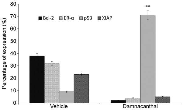 Flow cytometry analysis of MCF-7 cells treated with and without damnacanthal for 72 h were analyzed for the expression of Bcl-2, estrogen receptor-α, p53 and X-linked inhibitor of apoptosis proteins. The control cells were treated with vehicle in RPMI medium. Results are representative of three independent experiments. Data are presented as the means ± standard deviation of the percentage of protein expression from four independent experiments. ** P