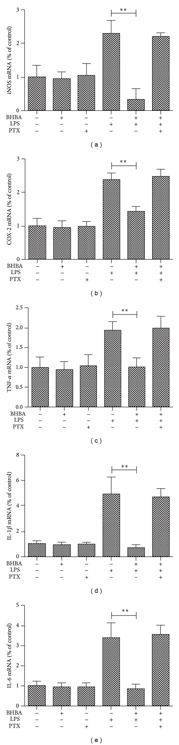 Effects of BHBA mediated by GPR109A. BV-2 cells were pretreated with vehicle or PTX for 1 h. Medium from each condition was removed and replaced with vehicle, BHBA (1.5 mM), PTX (100 ng/mL), LPS (1 μ g/mL), BHBA + LPS, or BHBA + LPS + PTX. BV-2 cells were sampled at 4 h. The mRNA of proinflammatory enzymes and proinflammatory cytokines were determined by quantitative real-time PCR. Attenuation by BHBA of induced mRNA of iNOS (a), COX-2 (b), TNF- α (c), IL-1 β (d), and IL-6 (e) from BV-2 cells; this effect is abolished with pretreatment with PTX (** P