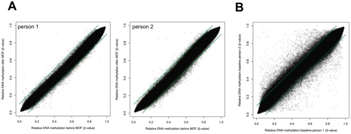 Intra-individual DNA methylation before and after MOF supplementation. Genome wide DNA methylation profiles of blood leukocyte gDNA of 10 individuals were profiled by Illumina 450K CpG array. A) DNA methylation intensities (β-values 0