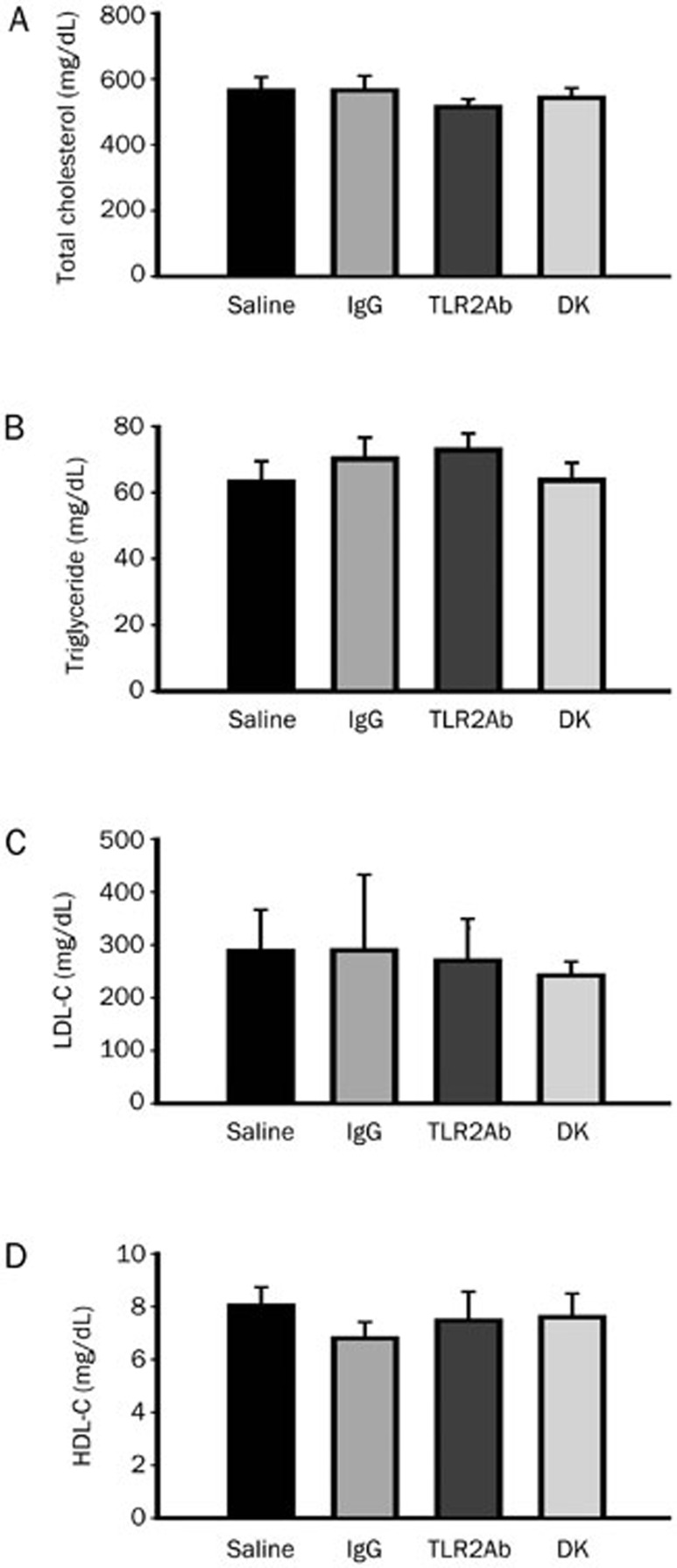 Blocking TLR2 activity does not affect plasma lipid levels. The total cholesterol (A), triglyceride (B), <t>LDL-C</t> (C), and <t>HDL-C</t> (D) levels were determined in 58-week-old ApoE −/− mice treated with saline, IgG or a TLR2ab iv for 18 weeks and in TLR2-deficient ApoE −/− mice (DK) fed a chow diet. The data are shown as the mean±SEM ( n =12 mice/group).