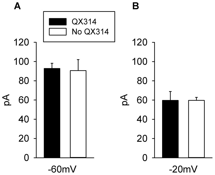 Effects of <t>QX314</t> on Dopamine modulation of Glutamatergic EPSCs. A : Comparison of the average change in amplitude of the early component of the glutamatergic EPSCs (in pA) measured at −60 mV, on superfusion of DA in the presence and absence of QX314. The solid bar represents the average response in 80 neurons (n = 80), in the presence of QX314 and the dashed bar represents the average of 8 neurons (n = 8) in the absence of QX314. No statistically significant difference was found between the two groups (Paired Student's t test p