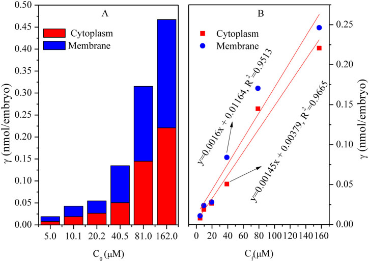 Distribution of diclofenac in the cytoplasm and membrane o f zebrafish embryos after 8 h exposure. The concentration of diclofenac was between 5 and 162 μM. (A) plots of γ vs C 0 ; (B) plots of γ vs C f .