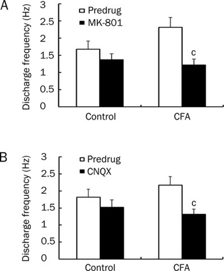 MK-801 (NMDA receptor antagonist) and CNQX (non-NMDA receptor antagonist) inhibit spontaneous discharge of ARC neurons in inflamed rats. (A) A significant decrease in neuronal discharge frequency was observed following MK-801 application (300 μmol/L) in inflamed rats ( n =11; P