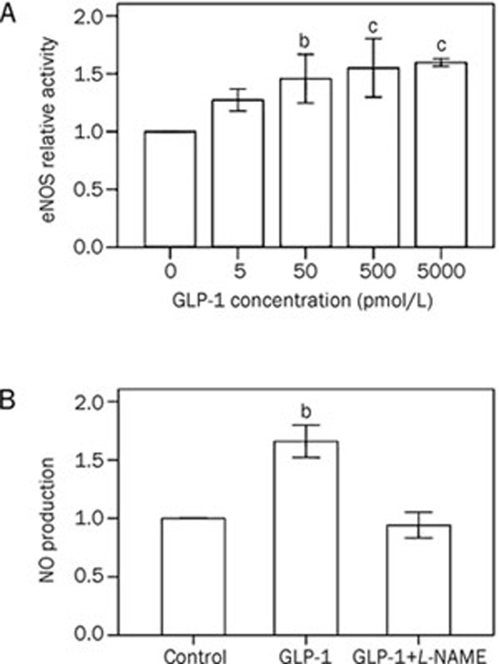 GLP-1 promotes endothelial nitric oxide synthase (eNOS) activity in human umbilical vein endothelial cells (HUVECs). HUVECs were incubated for 30 min in the absence or presence of GLP-1 (5–5000 pmol/L). Nitric oxide production was assayed using the fluorescent probe DAF-FM in the presence or absence of L -NAME (1 mmol/L). The experiment was repeated 3 times, and the values are means±SD. b P