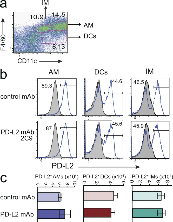Impact of <t>RGMb–PD-L2</t> blockade on tolerance induction is not caused by depletion of APC. (a–c) Mice immunized with OVA in ALUM on day 0 received OVA i.n. on days 7–9 and were treated with PD-L2 mAb 2C9 or isotype control (500 µg i.p.) on day 8. Lung cells were dispersed on day 10 and the expression of PD-L2 analyzed on AMs (F4/80 + CD11c + ), DCs (F4/80 − CD11c + ), and IMs (F4/80 + CD11c lo ). (a) Gating strategy used in b–d. (b) Solid line indicates staining with PD-L2 mAb TY25; shaded histogram indicates isotype control. One mouse/group representative of three is shown. (c) The number of PD-L2 + macrophages and DCs was quantified. Data are representative of two experiments.
