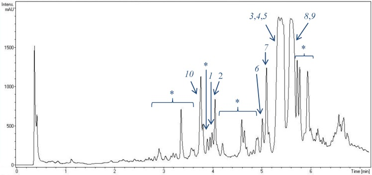UV chromatogram of an extract of Streptomyces strain HB202 (at 250 nm) after fermentation in GYM4 medium for three days and extraction with EtOAc. For analysis, a RP-C18 column was used applying an H 2 O/CH 3 CN gradient on a VWR Hitachi Elite LaChrom system. Peak detection was done by DAD/MS. Numbers indicate identified streptophenazines. 1 , 2 , 3 : new streptophenazines (I–K), 4 : streptophenazine A, 5 : streptophenazine B, 6 : streptophenazine C, 7 : streptophenazine D, 8 : streptophenazine F, 9 : streptophenazine G, 10 : streptophenazine H, *: unknown streptophenazines ( > 10 different molecules).