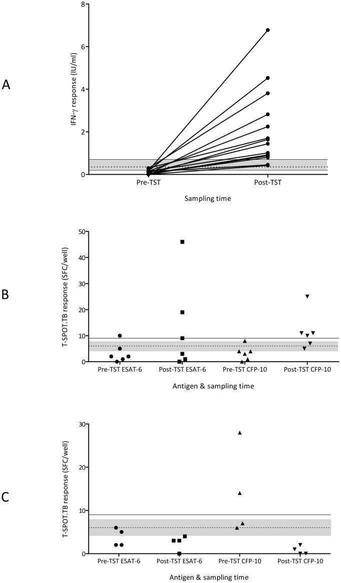 IGRA responses before and after TST administration. (A) IFN-γ responses detected by QFT-GIT in individuals who became positive following TST; (B) SFC numbers in response to ESAT-6 and CFP-10 in individuals who became positive by T-SPOT.TB following TST; (C) SFC numbers in response to ESAT-6 and CFP-10 in individuals who became negative by T-SPOT.TB following TST. Uncertainty zone (grey shaded area); threshold for QFT-GIT positivity (dashed line); upper and lower thresholds for T-SPOT.TB conversion (solid lines). TST = tuberculin skin test; QFT-GIT = QuantiFERON Gold in-Tube; IFN-γ = interferon-gamma; ESAT-6 = early secretory antigenic target-6; CFP-10 = culture filtrate protein-10; IU = international units; SFC = spot forming cells.