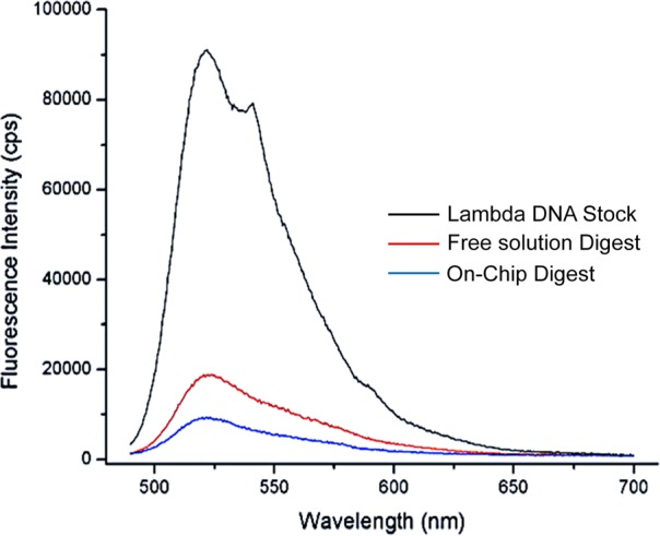 Plot of fluorescence intensity for a λ-DNA stock solution, free enzyme digestion, and the effluent from an IMERs digestion. The emission spectra were taken from 490 to 700 nm with 480 nm excitation. The spectrum labeled in black depicts the intensity of the λ-DNA stock. The blue line represents the spectrum of the IMERS digestion and the red line was that for the free solution digestion. For the IMERs digestion, the amount of immobilized enzyme was 4.96 pmol. For the λ-DNA stock, the IMERs was free of immobilized enzyme. In all cases, the solutions were incubated with PicoGreen following the reaction.