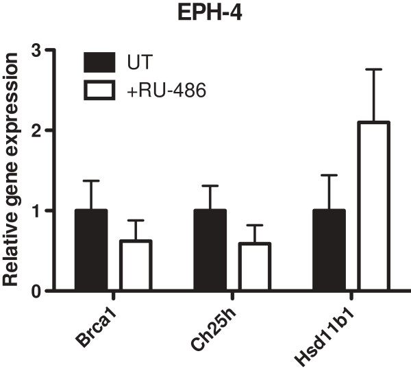 Expression of microarray candidate genes in response to RU-486 treatment. EPH-4 cells were treated 24 hours after plating ( ie . at 0 hrs) with either ethanol vehicle (UT) or 10 μM RU-486 (+RU-486) in serum-free media for a period of 48 hours, after which RNA was prepared. qRT-PCR analysis of gene expression was conducted using TaqMan mouse gene expression assays for Brca1 , Hsd11b1 , and Ch25h . Raw C t values for each gene were normalized to raw C t values for mouse Tbp internal control for triplicate samples, and are presented as the level of expression relative to the UT sample. Bars represent the mean of technical replicates, and error bars represent standard deviation (N = 3).