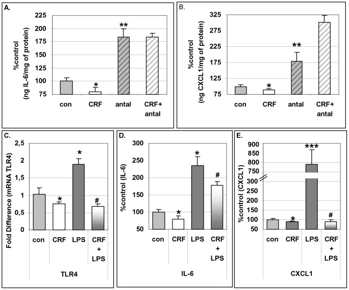Effect of CRF on TLR4 and interleukins during differentiation of 3T3L1. Pre-adipocytes were cultured in differentiating media supplemented with CRF at 10 −8 M, pre-treated with antalarmin at 10 −6 M and the production of IL-6 and CXCL1 was measured by ELISA (Panels A, B). Pre-adipocytes were cultured in differentiating media supplemented with CRF at 10 −8 M plus/minus LPS (10 ng/ml) and the expression of TLR4 was measured by RT-PCR (Panel C) and the production of IL-6 and CXCL1 (Panels D, E) was measured by ELISA. Data are expressed as percentage change compared with control values (mean±SE, n = 10 of five independent experiments). *p