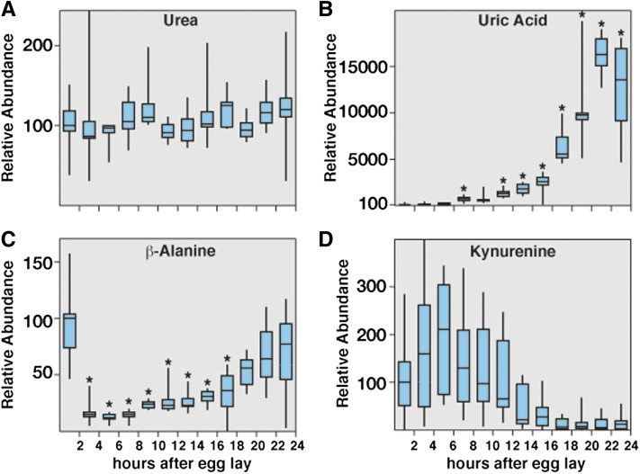 Analysis of metabolites associated with amino acid and purine degradation in w 1118 embryos. Small-molecule GC-MS was used to analyze the relative abundance of compounds associated with amino acid and purine degradation at 2-hr intervals throughout the course of w 1118 embryogenesis. Although the levels of urea (A) remain stable throughout embryogenesis, uric acid levels (B) exhibit the most dramatic increase of any metabolite in our analysis. (C) β-alanine levels decline sharply 2 to 4 hr AEL and then gradually increase during the course of embryogenesis. (D) The relative concentration of kynurenine remains stable for the first 12 hr of embryogenesis but then undergoes a dramatic decrease that correlates with the onset of the EmbMT. All data are graphically represented as described in Figure 4 . * P