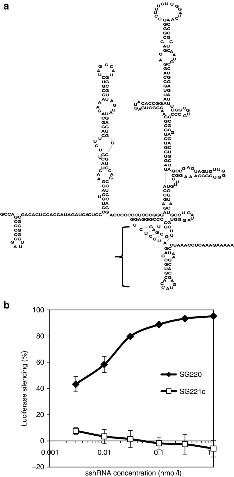 Gene silencing activity of HCV sshRNAs in vitro . ( a ) Secondary structure of the HCV IRES with the region targeted by sshRNA SG220 indicated by the bracket. ( b ) Potency of SG220 in suppressing luciferase gene expression driven by the HCV-IRES in 293FT cells. SG220 (filled diamonds); SG221C (scrambled control) (squares). The results shown are the mean va lues ± SEM from triplicate transfections.