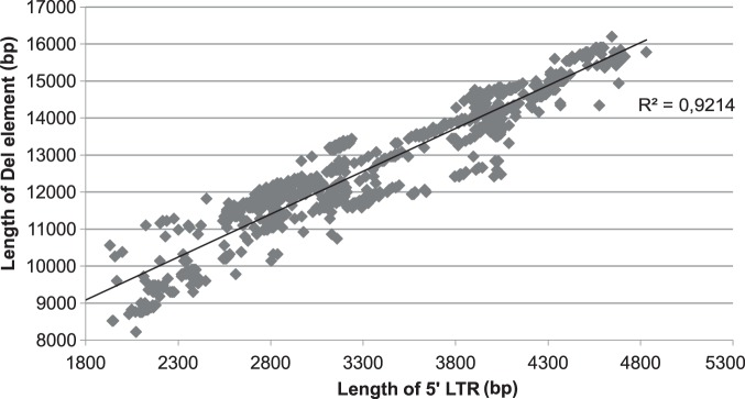 Correlation between LTR length and length of the entire element. The length of the LTR and the complete element were taken from the LTR_STRUC output. R 2 was calculated using Microsoft Excel. There is a strong positive correlation between the length of LTR and the complete element (R 2 = 0.92141).