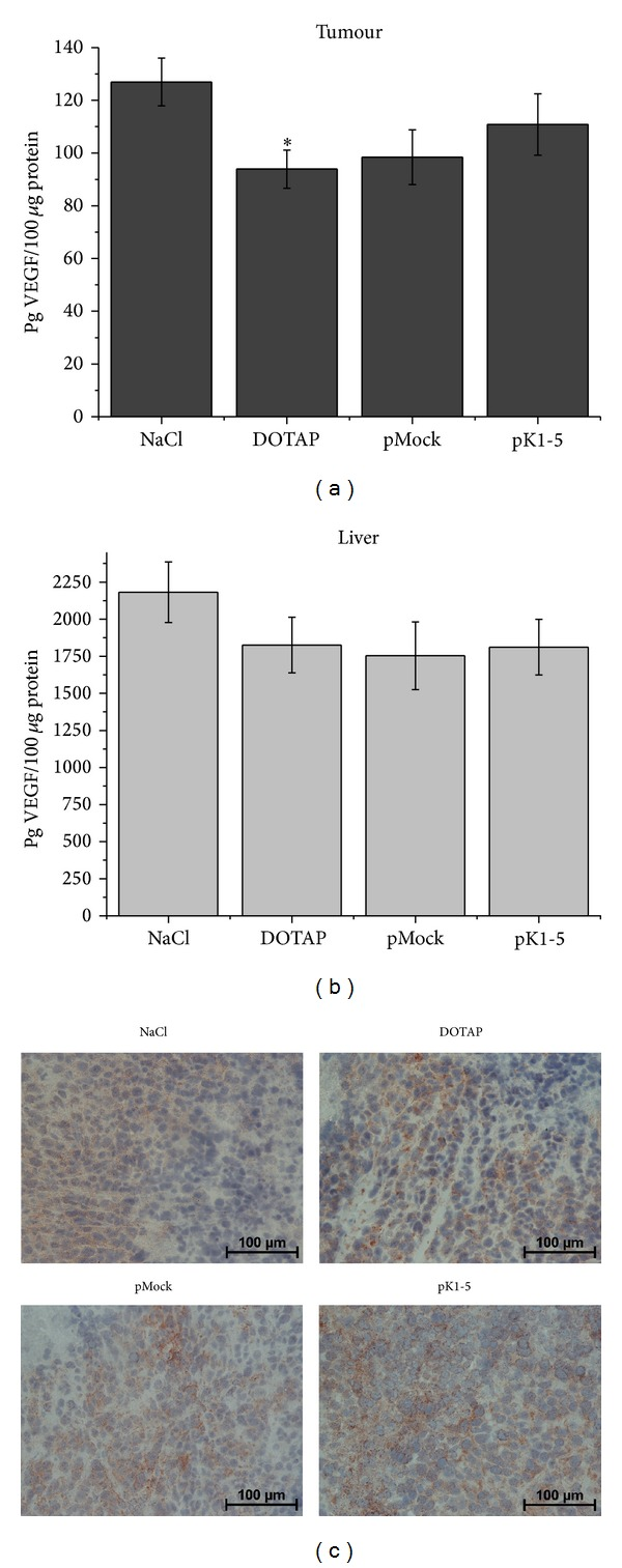 In vivo effects of pK1-5 on <t>VEGF</t> expression. Mice with subcutaneous tumours were treated with NaCl ( n = 5), DOTAP ( n = 6), pMock ( n = 6), or pK1-5 ( n = 5) and sacrificed after ten days. Tumours and livers were explanted and homogenized, serum was collected, and protein concentrations were evaluated. VEGF levels were quantified with a murine VEGF <t>ELISA.</t> Data are presented as mean pg VEGF ± SEM. * P