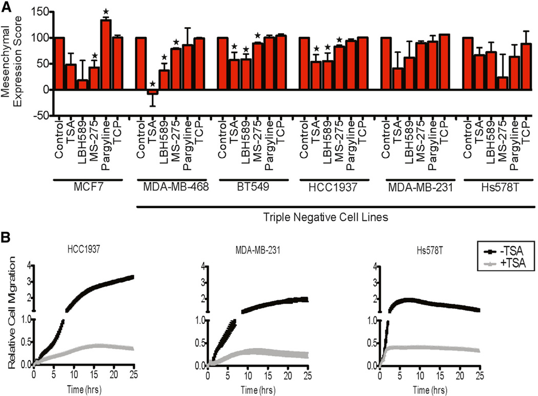 Suppression of Mesenchymal Markers and Migration by Small-Molecule Inhibitors in Triple-Negative Cancer Lines (A) Reversibility of mesenchymal markers in established cancer cell lines (triple-negative breast cancer) following treatment with small-molecule inhibitors for 24 hr. Expression of mesenchymal (FN1, SERPINE1, and VIM) genes were assayed (Fluidigm qRT-PCR) at 24 hr. *p%0.05. Student's t test for mean of mesenchymal gene markers, for each drug-treated cell line compared with control DMSO-treated cell line (data in Figures S6B and S6C ). (B) Real-time cell migration (Roche xCElligence system) of HCC1937, MDA-MB-231, and Hs578T following treatment (24 hr) with and without TSA. Migration of BT549 and MDA-MB-468 is not shown because there was minimal effect. See also Figure S6 .