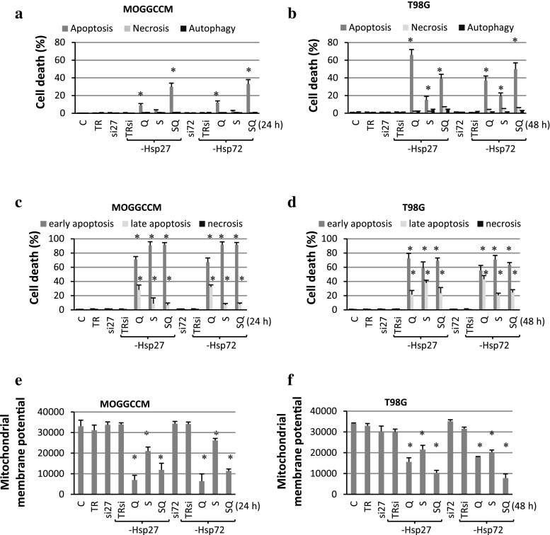 The effect of quercetin (Q) and sorafenib (S) on apoptosis, necrosis and autophagy induction in MOGGCCM ( a , c , e ) and T98G ( b , d , f ) cells transfected with specific siRNA anti-Hsp27 (si27) and anti-Hsp72 (si72). C control, TR transfection reagent, a , b cell death estimated by microscopic observation of cells stained with Hoechst 33342, propidium iodide, acridine orange, c , d apoptosis and necrosis induction estimated by flow cytometry with the Annexin V-FITC detection kit, e , f the mitochondrial membrane potential studied by flow cytometry after staining with DiOC 6 (3), * P