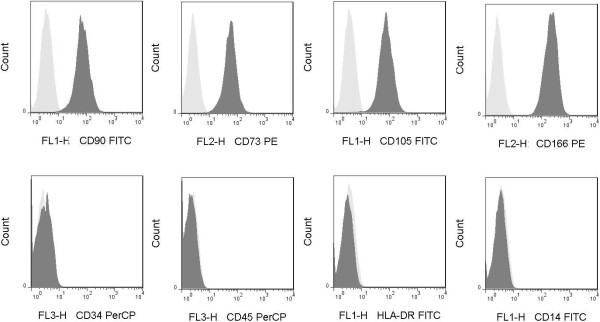 UC-MSC phenotype analysis. MSCs derived from umbilical cord were detached with trypsin-EDTA and stained with fluorescence antibodies against surface molecules indicated and analyzed by flow cytometry present in histogram plots. Appropriate isotype controls were performed (for each antibody isotype) to assess cell auto-fluorescence and background staining. MSCs were positive for CD73 (99%), CD90 (99%), CD105 (95%), CD166 (98%), negative for hematopoietic marker CD34 (1.7%), leukocyte common antigen CD45 (2.2%), HLA-DR (1.3%) and monocyte marker CD14 (1.5%).