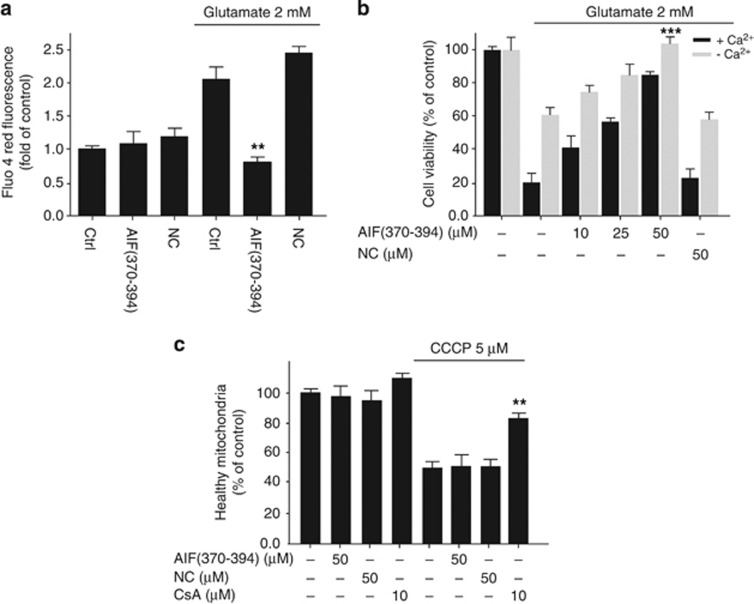 CypA-siRNA and AIF(370–394) peptide block the oxidative stress-induced increase of intracellular Ca2+ concentration. ( a and b ) HT-22 cells were treated with 2 mM glutamate for 12–14 h. The intracellular concentration of Ca 2+ was assessed by the fluorescent Ca 2+ indicator Fluo-4 AM in 96-well plates. ( b ) Cell viability assessment of HT-22 cells received AIF(370–394) peptide at the indicated concentrations, followed by exposure to 2 mM glutamate for 12–14 h, either in a standard culture medium (black bars) or in a medium without Ca 2+ (gray bars) ( n =4, *** P