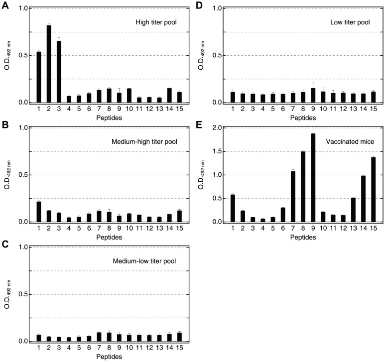 Reactivity of pooled Ugandan serum samples and a vaccinated mouse serum pool against synthetic peptide series I. ( A ) High, ( B ) medium-high, ( C ) medium-low, ( D ) low titer sera pool. Each pool consists of equal aliquots of 9–10 individual sera. The geometric mean anti-SE36 <t>IgG</t> titers of the individual samples are in Table S2 . The patterns of reactivity for 18 individual sera are shown in Fig. S2 . Serum samples were diluted 800-fold. Secondary antibody was peroxidase-conjugated goat IgG fraction to human IgG (whole molecule) (55220; Cappel ICN Pharmaceuticals Inc, Aurora, OH) diluted 1∶2000. ( E ) Pooled serum from five mice used at 1∶1,600. Secondary antibody was peroxidase conjugated <t>affiniPure</t> goat anti-mouse IgG antibody (H+L) (115-035-166; Jackson ImmunoResearch Laboratories, Inc., West Grove, PA) diluted 1∶5000. All sera were tested for ELISA at least four times. Error bars reflect standard deviation. Reactivity of malaria naïve Japanese serum and naïve mouse serum are shown in Fig. S2 .