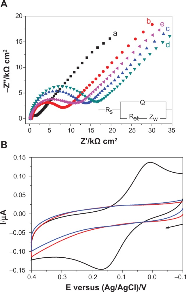 ( A ) Electrochemical impedance spectroscopy of Au (curve a), Au/aptamers (curve b), Au/aptamers/MCH/BSA (curve c), Au/aptamers/MCH/BSA/rHuEPO (curve d), and Au/aptamers/MCH/BSA/rHuEPO/MBA-biotin-AuNPs (curve e) electrodes in [Fe(CN) 6 ] 3−/4− . ( B ) Cyclic voltammograms of the aptamer-covered electrode with (black curve) and without (red curve) the capture of rHuEPO, followed by the attachment of MBA-biotin-AuNPs as well as SA-ALP for the generation of p-AP. Blue curve corresponds to that after the capture of rHuEPO and the treatment with biotin-AuNPs in place of MBA-biotin-AuNPs. The concentration of rHuEPO was 10 pmol L −1 . The arrow indicates the scan direction. Abbreviations: biotin-AuNP, biotin-modified gold nanoparticle; BSA, bovine serum albumin; MBA-biotin-AuNP, 4-mercaptophenylboronic acid/biotin-modified gold nanoparticle; MCH, 6-mercapto-1-hexanol; p-AP, p-aminophenol; Q, a constant phase element; Ret, electron-transfer resistance; rHuEPO, recombinant human erythropoietin; Rs, resistance between working and reference electrodes; SA-ALP, streptavidin-conjugated alkaline phosphatase; Zw, Warburg impedance.