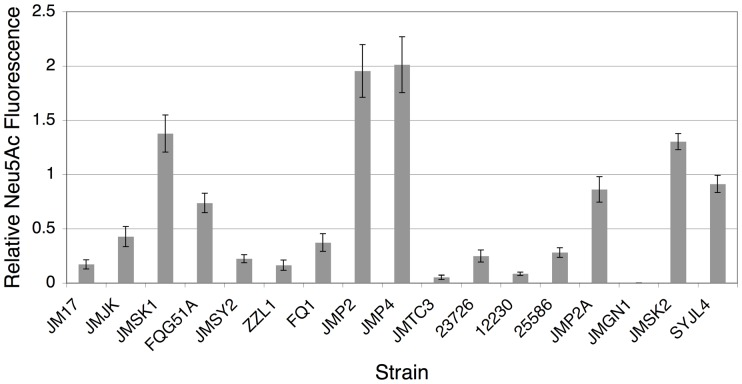 Comparison of surface sialylation abilities among oral fusobacteria. Representatives of all of the F. nucleatum subspecies as well as F. periodonticum were grown to mid-log phase in SDM containing vegetable peptone before fluorescently labeling surface sialic acid. Average fluorescence intensity values were determined using ImageJ image analysis software. Data are expressed relative to the average fluorescence intensity values for erythrocytes labeled in parallel. Erythrocyte fluorescence values were arbitrarily assigned a value of 1. The species identities for the strains are as follows: F. nucleatum ssp. animalis (JM17 – FQG51A), F. nucleatum ssp. polymorphum (JMSY2 – JMTC3), F. nucleatum ssp. nucleatum (23726 – 25586), F . nucleatum ssp. vincentii (JMP2A), F. nucleatum unnamed subspecies (JMGN1), and F. periodonticum (JMSK2 and SYJL4).