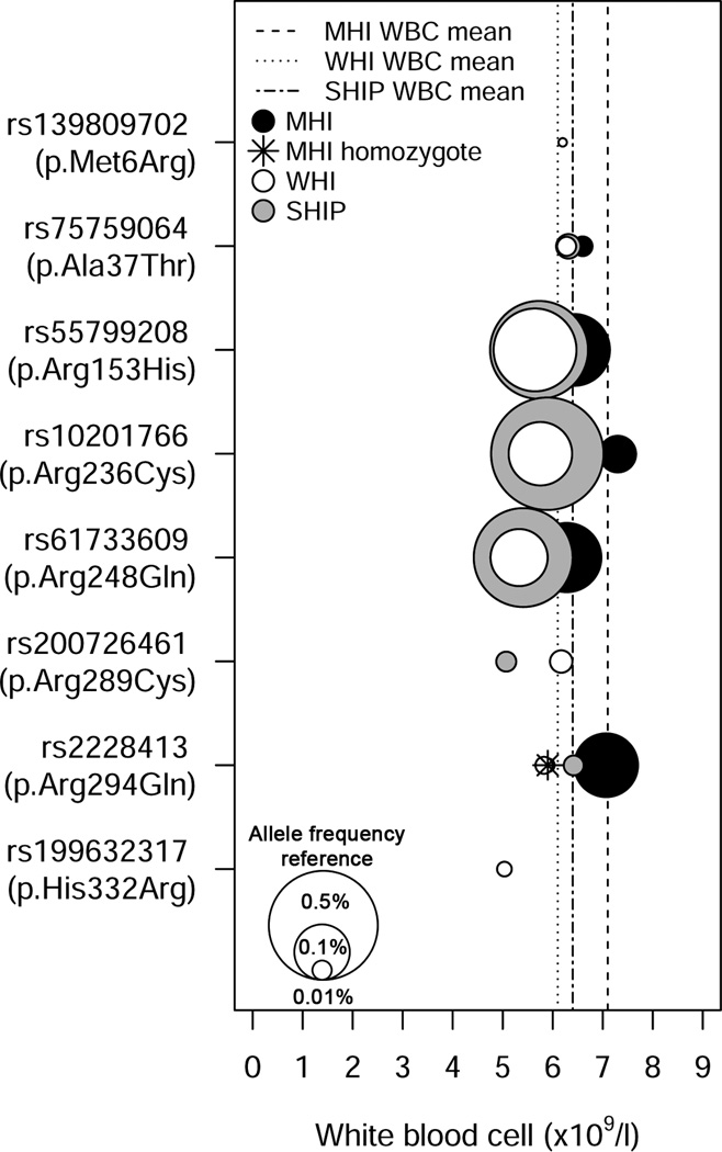 Rare and low-frequency missense variants in <t>CXCR2</t> are associated with lower white blood cell (WBC) count. The symbol legend is in the upper left corner of the figure. A vertical line represents the mean WBC count for each study. The middle of each color-coded circle (black=MHI, white=WHI, grey=SHIP) corresponds to the mean WBC count for individuals that carry the corresponding missense variants and the size of the circles is correlated with allele frequency. The three white circles in the lower left corner of the figure are provided as references and represent variants with minor allele frequency of 0.01%, 0.1% and 0.5%. For rs2228413 (p.Arg294Gln), there is a participant from MHI that is homozygote for the rare allele (star).