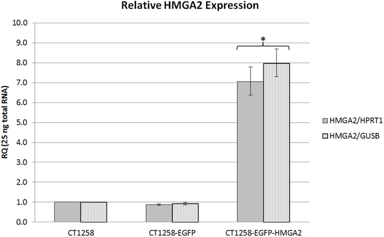HMGA2 real-time PCR analyses. Relative HMGA2/HPRT1 and HMGA2/GUSB expression in native CT1258, CT1258-EGFP and CT1258-HMGA2-EGFP cells. Error bars are standard deviations. *p≤0.05 indicates a statistical significant expression deregulation of HMGA2 in CT1258-HMGA2-EGFP cells when compared to native CT1258.