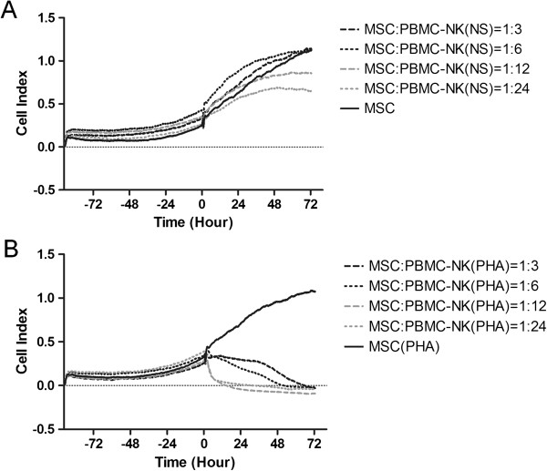 Impedance profiles of MSCs in co-culture with NK-depleted PBMCs. Unstimulated (NS) NK-depleted PBMCs (A) and PHA-stimulated NK-depleted PBMCs (B) were added to MSCs (400/well), after about 72 hours of culture, at four different ratios. The experiment was conducted in triplicate. MSCs, mesenchymal stem cells; NK, natural killer; PBMCs, peripheral blood mononuclear cells; PHA, phytohemagglutinin.
