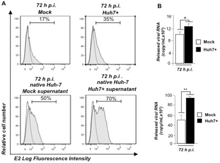 SLAMF3 over-expression increases the HCV infectivity. Mock and Huh7+ cells were challenged with HCVcc (A, top panel). (A) Supernatants were harvested at 72 h p.i., released viruses quantified by QPCR and equal viral loads from both supernatants were used to infect native Huh-7 cells (A bottom panel). (B) Viral replication was assessed by intracellular viral E2 protein expression measurement by flow cytometry and quantitation of released viral RNA at 72 h p.i. (mean of three independent experiments; error bars: SD *p