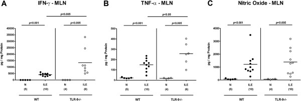 Pro-inflammatory cytokine responses in mesenteric lymph nodes following ileitis induction. (A) IFN-γ, B) TNF-α, and (C) nitric oxide protein concentrations were determined in ex vivo biopsies of mesenteric lymph nodes (MLN) derived from C57BL/6 wildtype (WT; black circles) and TLR-9 deficient (TLR-9-/-; white circles) mice seven days following ileitis induction (ILE). Naïve mice served as negative controls (N). Numbers of analyzed mice (in parentheses), means (black bars) and levels of significance ( P -values) as compared to the respective groups (determined by Mann–Whitney- U test) are indicated. Data shown were pooled from three independent experiments.