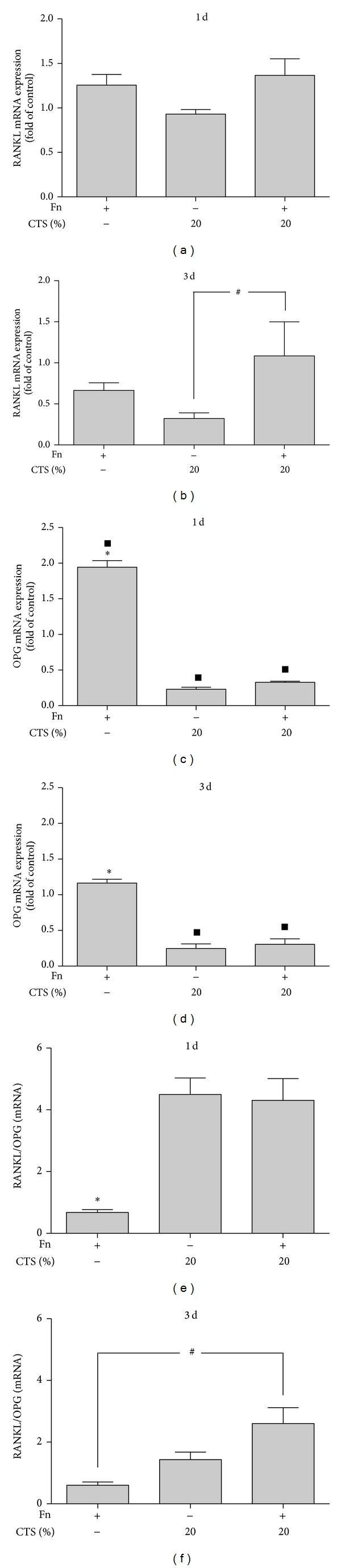 (a and b) RANKL expression in PDL cells stimulated by F. <t>nucleatum</t> <t>ATCC</t> 25586 and/or CTSH at 1 day (a) and 3 days (b). (c and d) OPG expression in PDL cells stimulated by F. nucleatum ATCC 25586 and/or CTSH at 1 day (c) and 3 days (d). (e and f) RANKL/OPG mRNA ratio in PDL cells stimulated by F. nucleatum ATCC 25586 and/or CTSH at 1 day (e) and 3 days (f). *Significant difference compared to other groups ( P